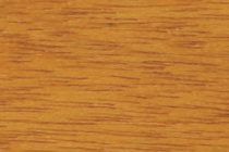 Meranti - Old pine